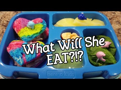 Twenty-Seventh Week Of School Lunches - What She Ate - Bento Style Lunch - Bentgo Box - Bento Lunch