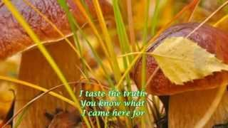 Mandy Moore ♥ I Wanna be with You ♥ Autumn ♥ Lyrics HD
