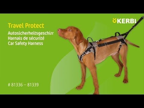 Autosicherheitsgeschirr Travel Protect