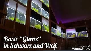 Garnelen im Wohnzimmer! Neue Lichtblenden im Programm! Hochglanzoptik für edle Aquaristik!