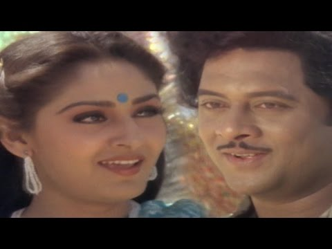 Parimalinchu  Video Song || Puli Bebbuli Movie || Krishnam Raju,Chiranjeevi,Jayapradha,Radhika