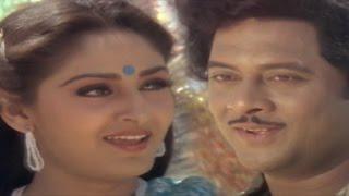 Parimalinchu  Video Song || Puli Bebbuli Movie || Krishnam Raju,Chiranjeevi,Jayapradha,Radhika