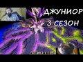 ОБХОД ДЖУНИОРА 3 СЕЗОН С MELHARUCOS