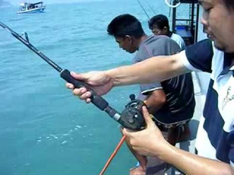 ตกปลาช่อนทะเล