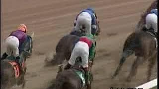 2009年度福山競馬アラ系A1競走「夏木立特別」