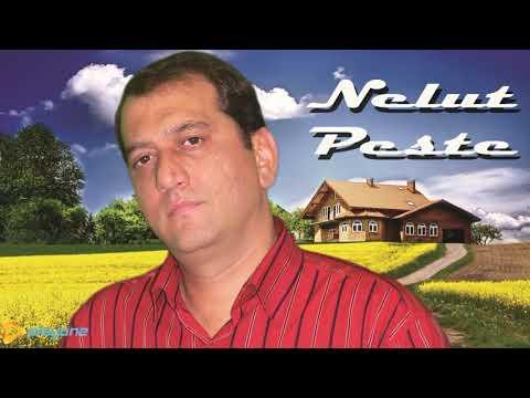 NELUT PESTE - Undeva inseamna ACASA 2018