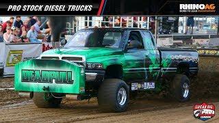 PPL 2018: Pro Stock Diesel Trucks pulling in Freeport, IL