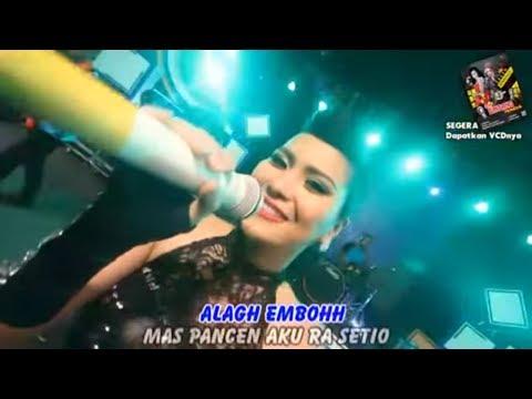 "Fitri Tamara "" Bintang Pantura 4  - LORO LINU (Official Video Karaoke)"