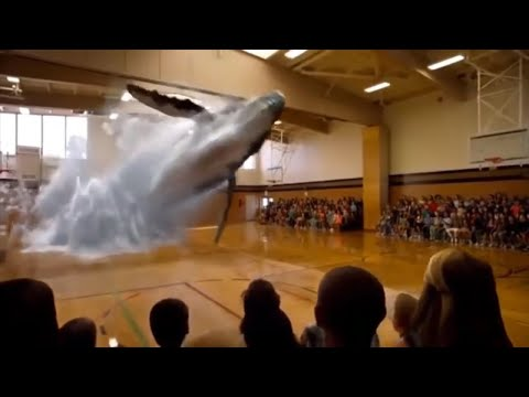 Amazing Must See Technology 7D hologram Shown in Dubai, Poland and Japan