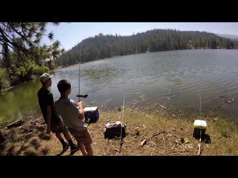 Trout Fishing In July.