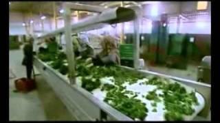 فيلم تسجيلي عن محافظة بني سويف 2 من 2