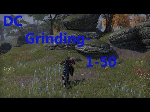 eso ebonheart pact leveling guide