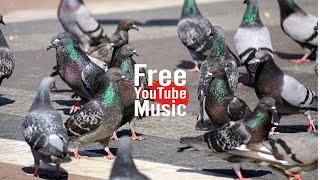 Mob Battle - Silent Partner (Alternative & Punk | Dark) - Free YouTube Music