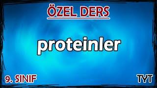 6) Proteinler - Özel Ders (9. Sınıf)