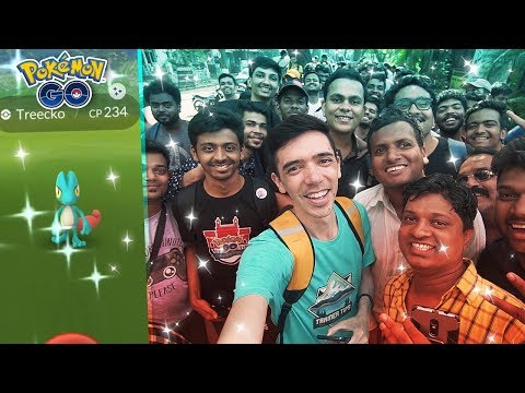 THE CRAZIEST COMMUNITY DAY EVER! Treecko Community Day in India! (Pokémon GO) thumbnail