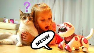 Теперь у Николь Две 🐱🐱 Кошки и 🐭 Мышка ! Играем в КОШКИ МЫШКИ ! Кошка против Мышки TEKSTA ROBOKAT