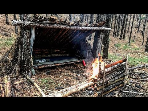 Primitive Survival Shelter Lean-to Winter Bushcraft Overnighter in Bear Country Part 1