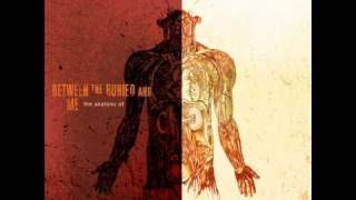 Between The Buried And Me - Malpractice