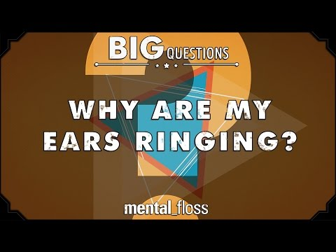 Why are my ears ringing? - Big Questions - (Ep. 19)