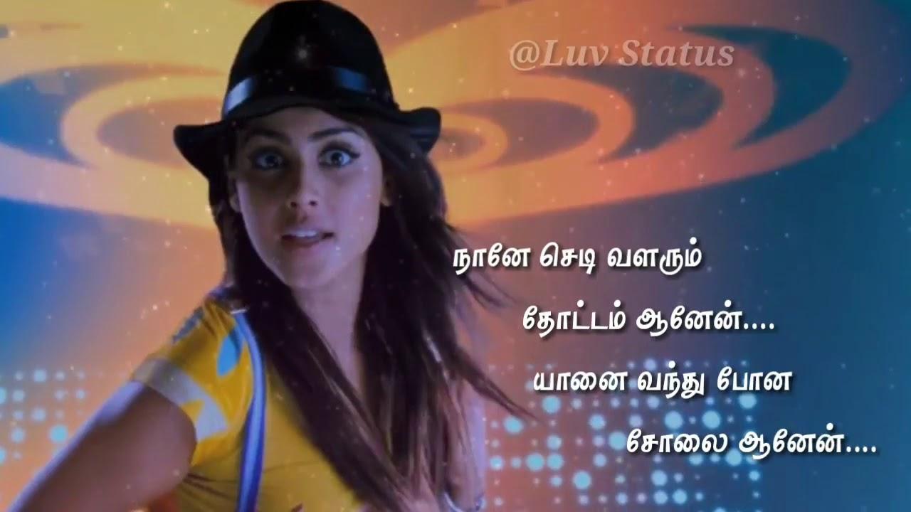 Tamil love song whatsapp status video - YouTube