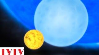 Đâu mới thực sự là ngôi sao lớn nhất vũ trụ? - Thư Viện Thiên Văn
