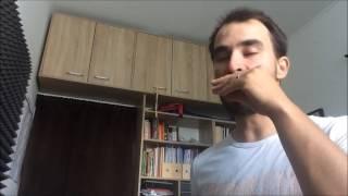Juraj Schweigert - Harmonica Lesson: Black Hole Sun