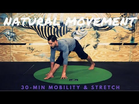 Stay Loose: Natural Movements for Mobility & Stretching