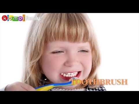 Learning English - THINGS - Dạy bé học tên các đồ vật (bằng hình ảnh) - Kidmolfamily