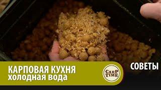 ЛУЧШИЙ рецепт для ЛОВЛИ КАРПА в холодной воде СОВЕТ