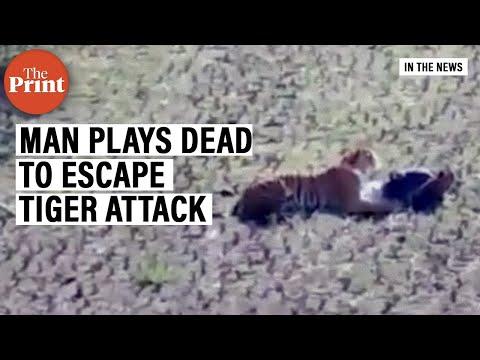Man plays dead