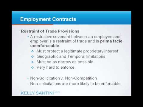 Employment Contracts - Employment Law 101.wmv