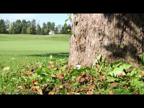 World Partnership Golf Toronto - 2012
