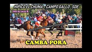 CAMBA PORA Hipico El Chuma Campo Gallo 14 04 19