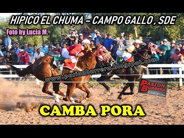 # CAMBA PORA # Hipico El Chuma, Campo Gallo (14-04-19)