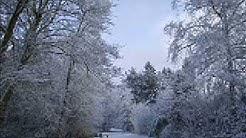 Schneewalzer