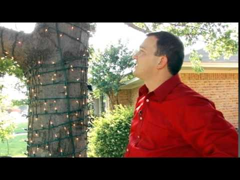 WEBINAR 2 - How to Design and Install Mini Lights on Trees and Shrubs