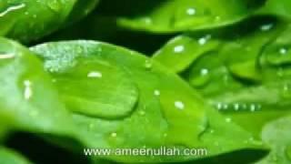 Da Monz Tariqa by Sheikh Ameen Ullah Part 4 of 6 (Pashto Bayan)
