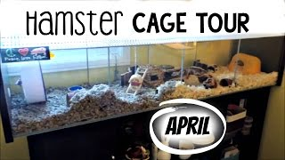 April Hamster Cage Tour - Ikea Detolf