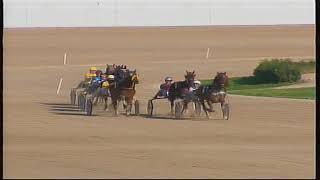 Vidéo de la course PMU PREMI HOURVARI