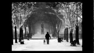 Neil Halstead - Home for the Season