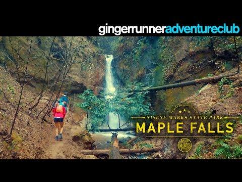MAPLE FALLS - NISENE MARKS STATE PARK | The Ginger Runner Adventure Club