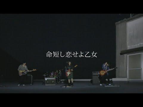 MOSHIMO「命短し恋せよ乙女」MV