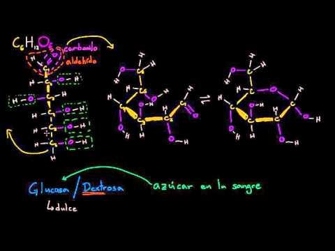 Estructura Molecular De La Glucosa Macromoléculas Biología Khan Academy En Español