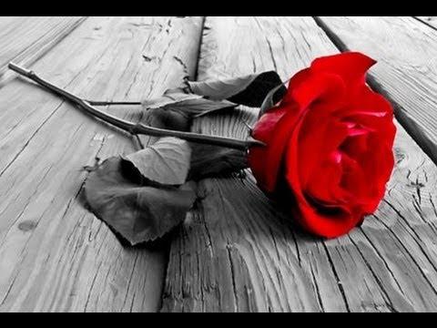 Como dibujar una rosa... How to draw a rose... Como desenhar uma ...