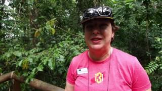 Hiking Costa Rica's Manuel Antonio National Park