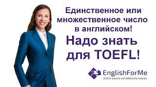 Единственное и множественное число грамматика для TOEFL - EngForMe