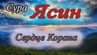 Текст кыргызча ясин суросу ЯСИН СУРОСУ