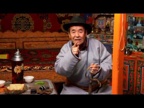Ad-rolls for hotline +976 97177000 WWF Mongolia