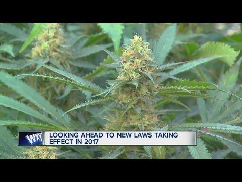 New Michigan Laws in 2017