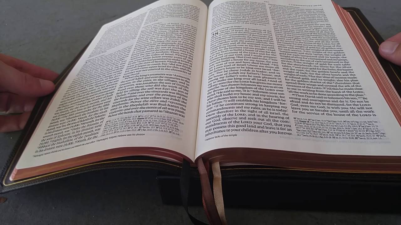 ESV Omega Thinline Reference Bible by Matthew Everhard